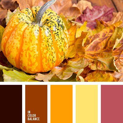 красно-розовый, оттенки оранжевого, светло-оранжевый, темно-оранжевый, тыквенный цвет, цвет тыквы, цвета для декора помещения в Хэллоуин, цвета для хэллоуина, цвета осени, цвета осени 2015, цветовая палитра для Хэллоуина, яркий оранжевый.5