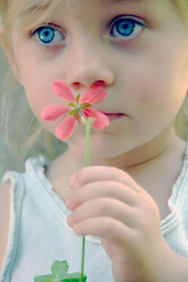 La flor y tus ojos.