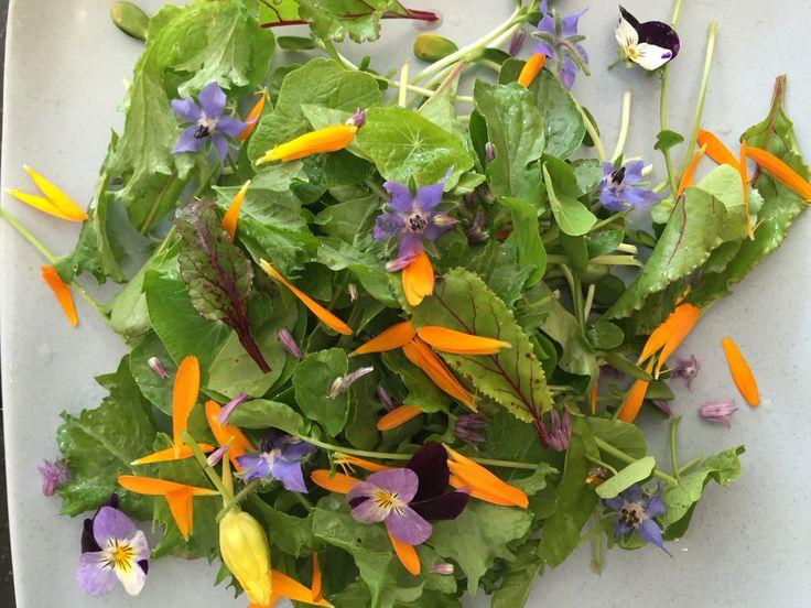 5.  Add more #flowers like #borage, #violas, #nasturtiums, #chives.
