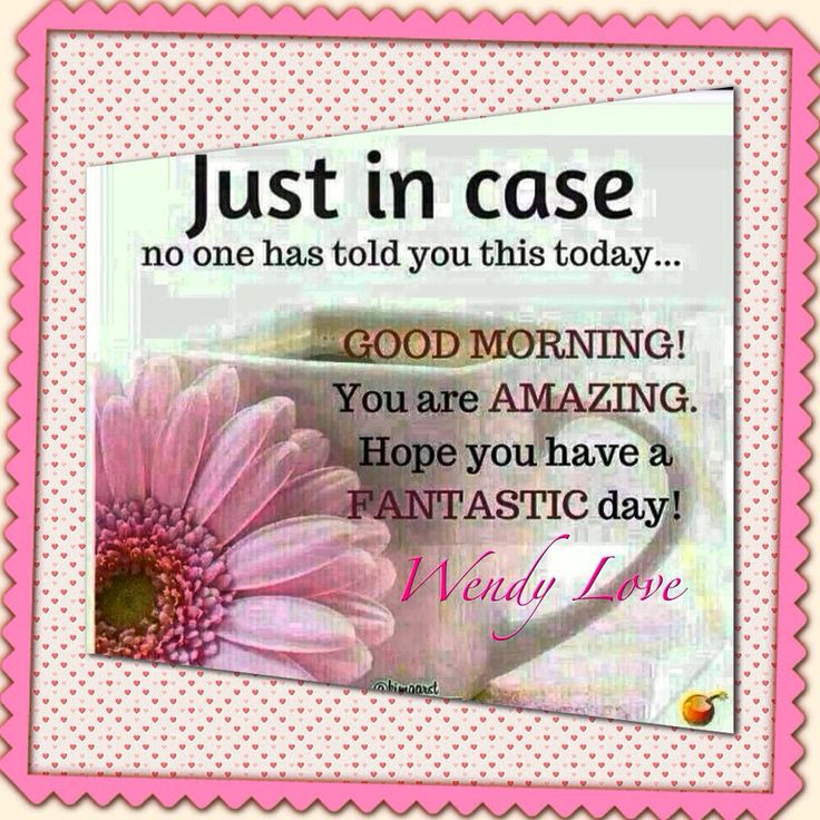 just in case  no one have told you this today    good morning  you u0026 39 re amazing  have a fantastic