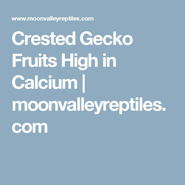 Crested Gecko Fruits High in Calcium   moonvalleyreptiles.com