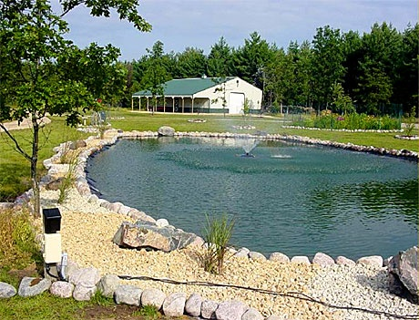 23 best images about pond design on pinterest one fish for Pond retailers