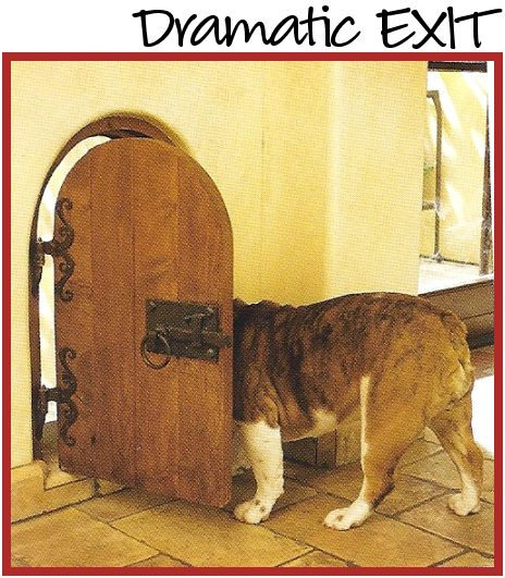 Doggie Door. . . is this fun or what? Reminds me of Alice in Wonderland!