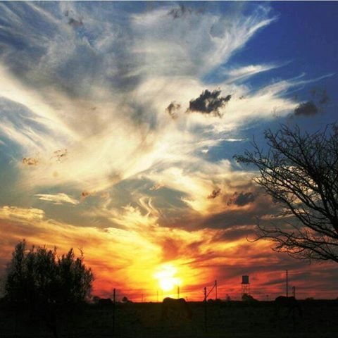 Sunset somewhere in the Free State