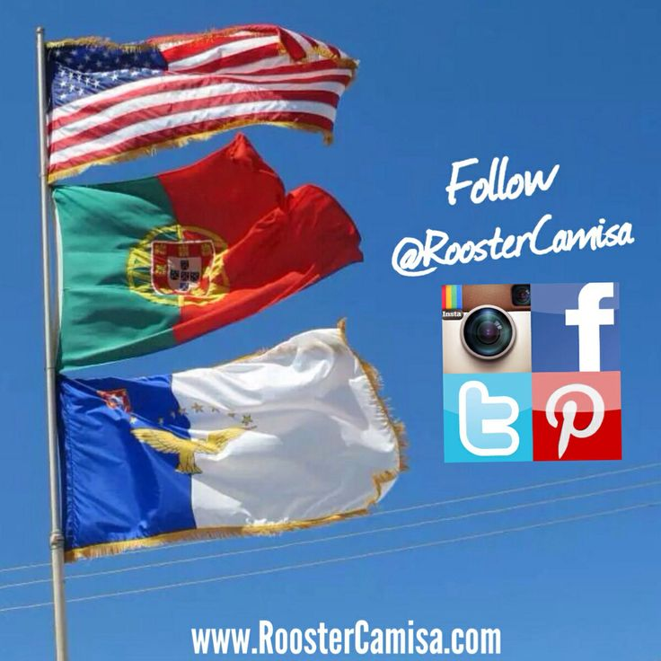 Connect with Rooster Camisa on all of our social networks or sign up for our newsletter on our website today. www.RoosterCamisa.com                          Portugal Azores Portuguese cristiano Ronaldo Portuguese kids Portuguese problems Portuguese and I know it