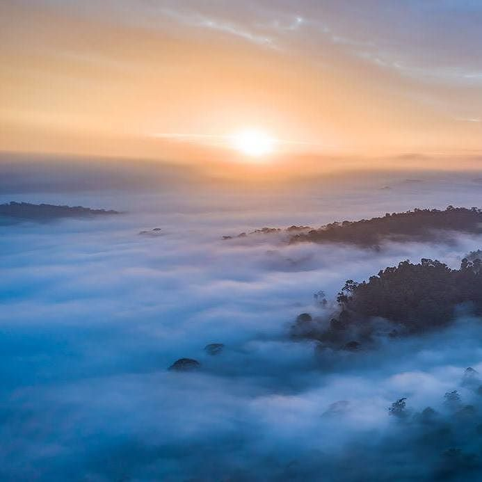 Above the clouds in Borneo Danum Valley Conservation Area | Photo by Ian Plant