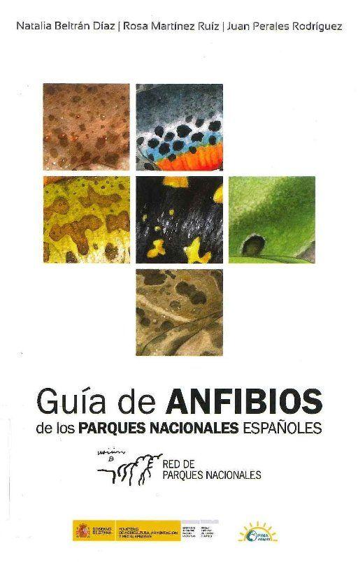 GUÍA DE ANFIBIOS DE LOS PARQUES NACIONALES ESPAÑOLES.  invita a conocer los Parques Nacionales desde una perspectiva diferente, la de los anfibios, y lo hace precisamente en relación al cambio climático, ya que el origen de esta guía está en un programa de adaptación en dichos parques. Más en http://zaragozaciudad.net/docublogambiental/2017/052501-guia-de-anfibios-de-los-parques-nacionales-espanoles.php