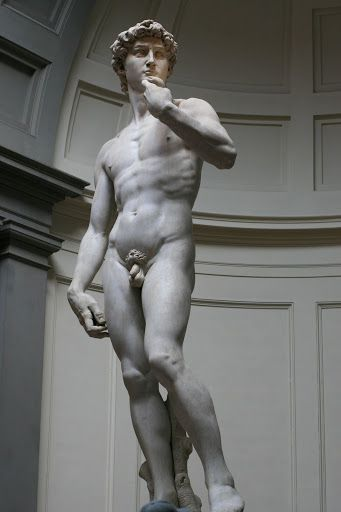 'David' by Michelangelo, 1501-04, height 17.0 ft, marble. at L'Accademia, Florence, Italy. This is beautiful because Michelangelo was a great sculptor even more than a painter. Even though his paintings were more famous he still considered himself more of an artist. David was his most famous sculpted work or art.