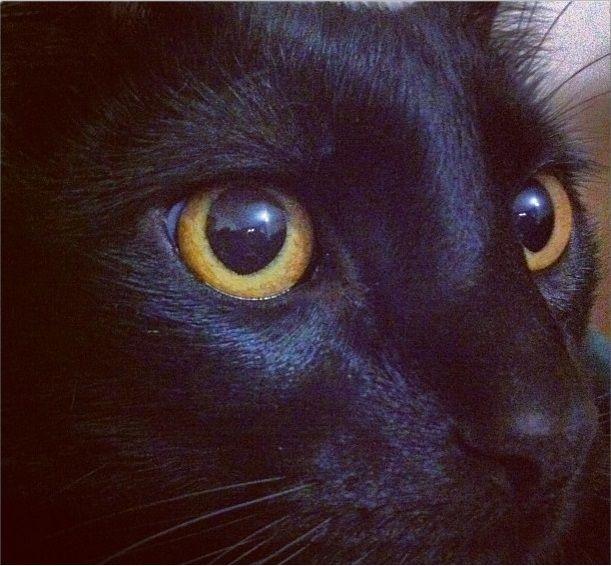 Ojos de amor. #paoFotografía