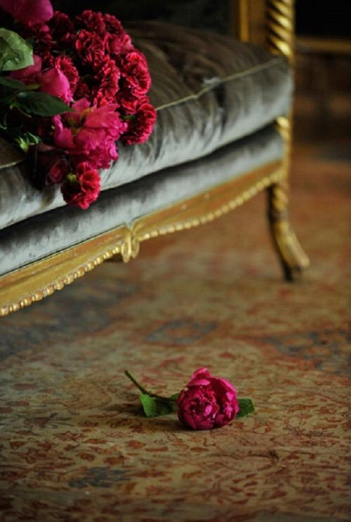 Audrey-loves-Paris tumblir