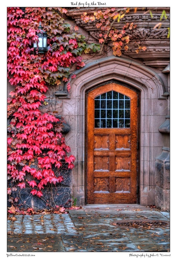 Love the door shape and the vines growing on the house!