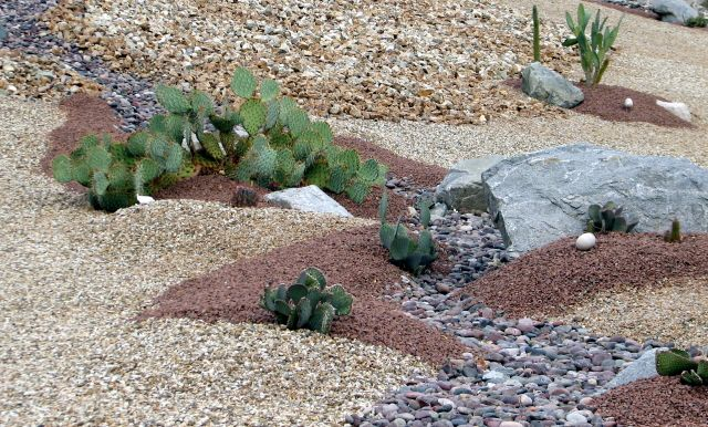Spring Hummingbird Migration Update April 16 2012 additionally Article besides Lambs Ears Stachys Byzantina Silky Fleece as well Xeriscape Landscape together with Four Things You Need Know About Soil Ph. on drought tolerant gardening ideas