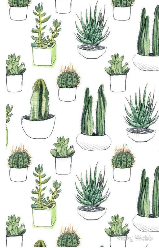 Cactus Wallpaper Succulent