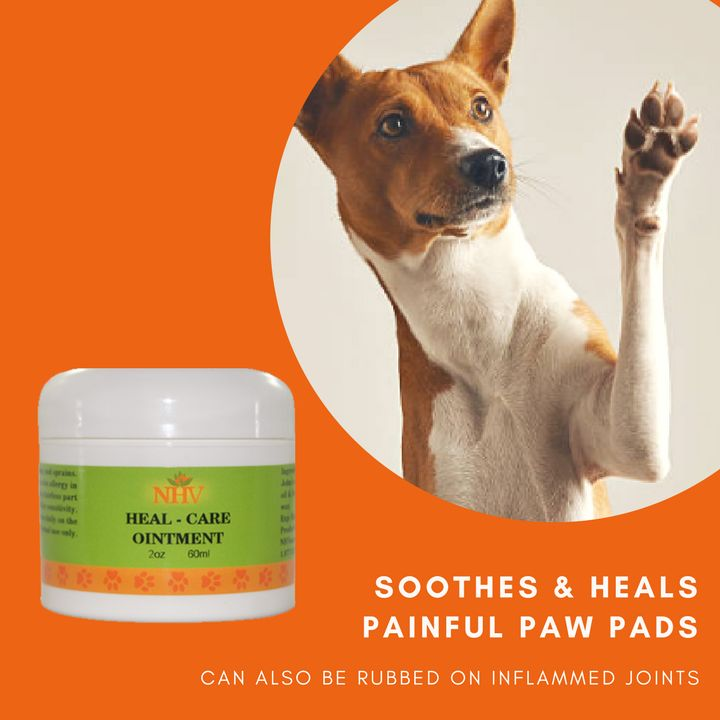 HEAL CARE OINTMENT FOR DOGS ointment for paw pad injuries in dogs. Can also be rubbed on limbs and back to reduce pain and fatigue.  Promotes healing of injured paws Helps sterilize wounds Supports the healing of cracks and bruises Protects and soothes painful paw pads