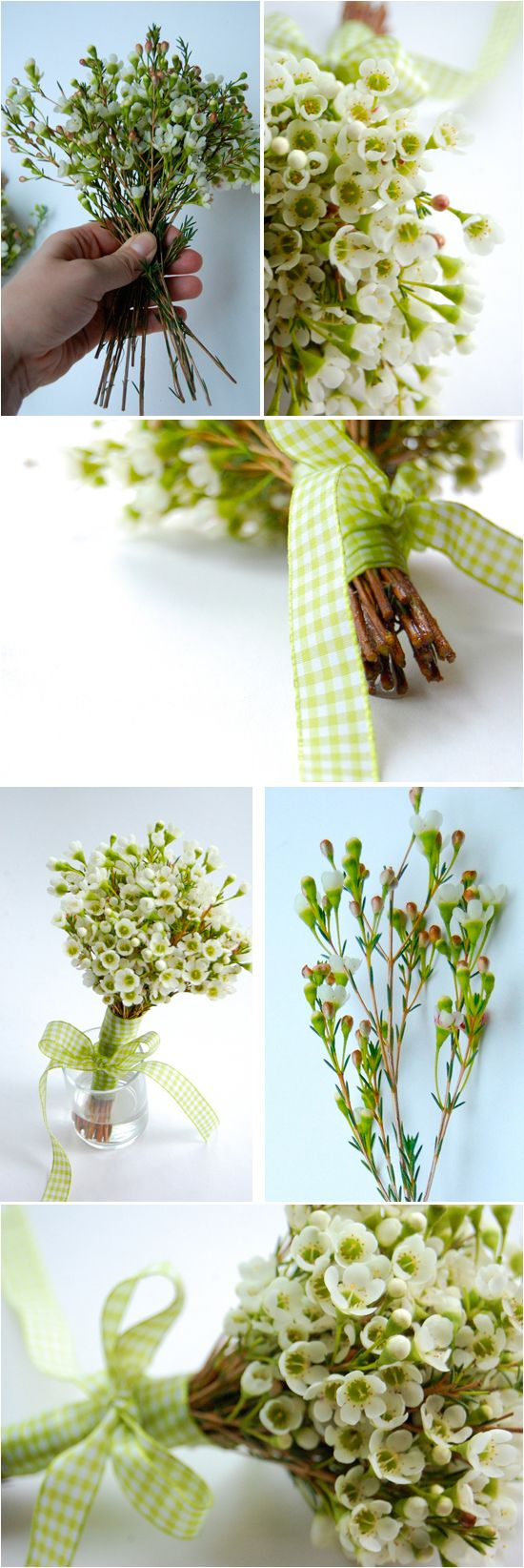 DIY: Waxflower Bouquet - possible alternative to baby's breath.  Apparently very common and easy to get.