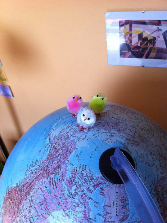Chicks on top of the world
