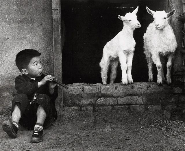 정범태 1957. 피리부는 소년