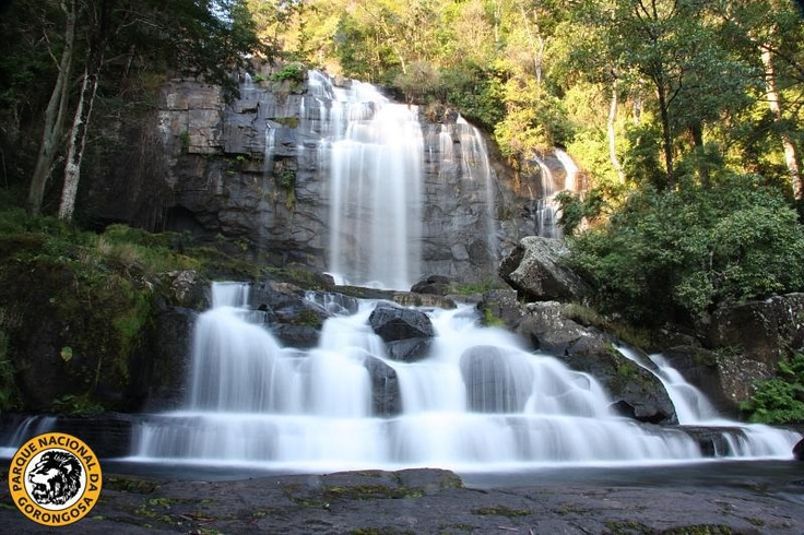 One of the landscapes that shows how diverse and fascinating Gorongosa is: the Murombodzi Waterfalls, on Mount Gorongosa: http://on.fb.me/WRvaoc
