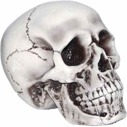 Halloween Decorations Realistic Scary Life-Size Foam Skull