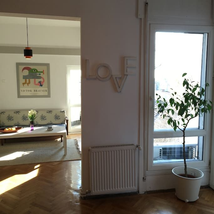 Check out this awesome listing on airbnb scandinavian modernist charm apartments for rent in