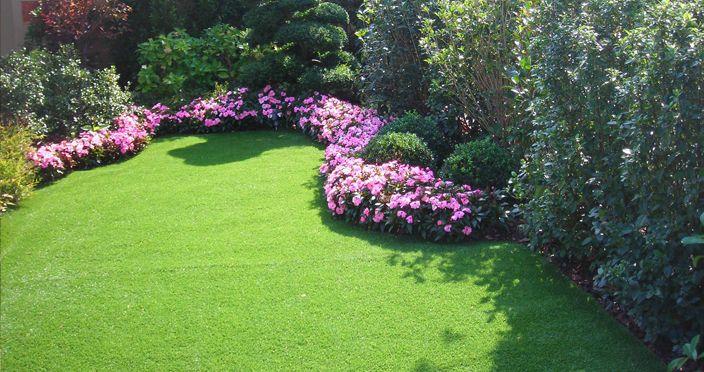 Oltre 1000 idee su giardino prato su pinterest erbe for Piante secche ornamentali
