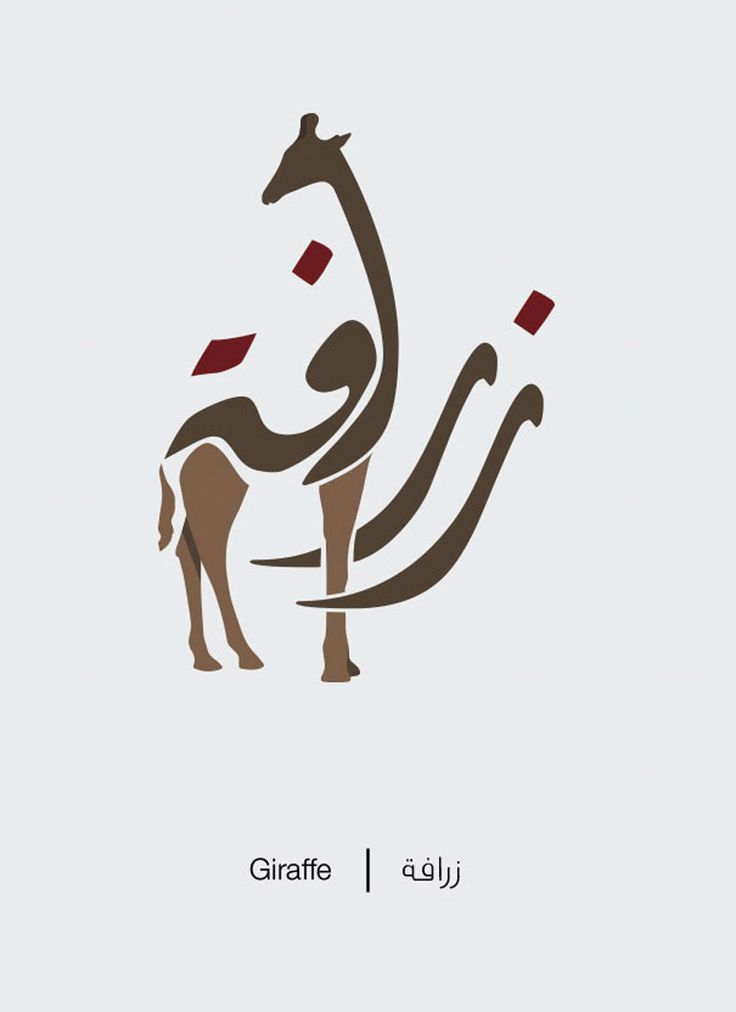 Illustrations that explain Arabic words' meaning