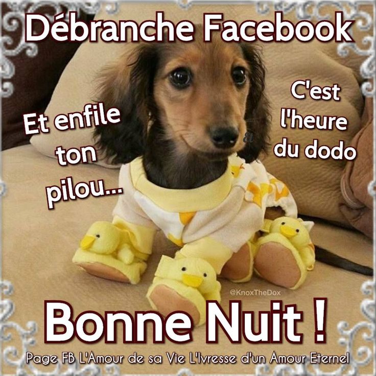 Débranche Facebook Et enfile ton pilou... C'est l'heure du dodo. Bonne Nuit !