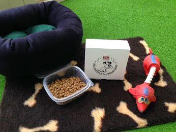 A tutti i nostri ospiti che si presentano nelle nostre strutture con il proprio cagnolino, vogliamo fare un omaggio, un utile 'KIT DI BENVENUTO', così che anche il vostro cucciolo si sentirà come a casa!  www.inchotels.com