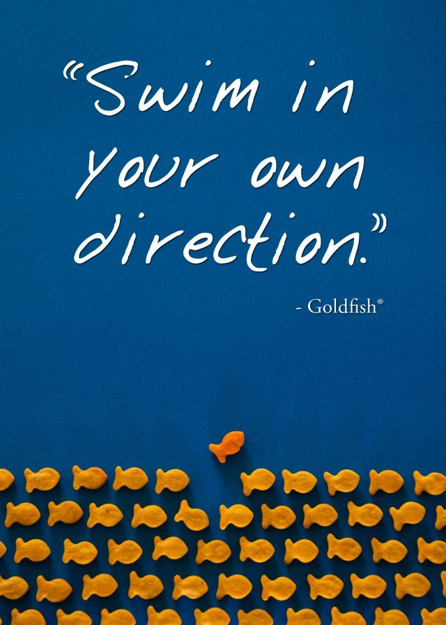 """Swim in your own direction."" Wise words from a Goldfish cracker. #quote #innovation"