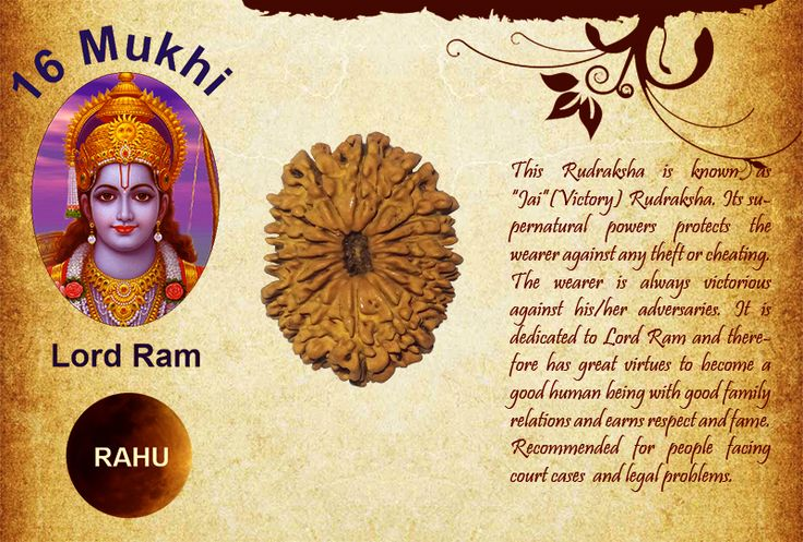 "Benefits of sixteen Mukhi Rudraksha: God: Lord Ram / Planet: Rahu  This Rudraksha is known as ""Jai""(Victory) Rudraksha. Its supernatural powers protects the wearer against any theft or cheating. The wearer is always victorious against his/her adversaries. It is dedicated to Lord Ram and therefore has great virtues to become a good human being with good family relations and earns respect and fame. http://www.rudralife.com/Rudraksha/details.php?id=22"