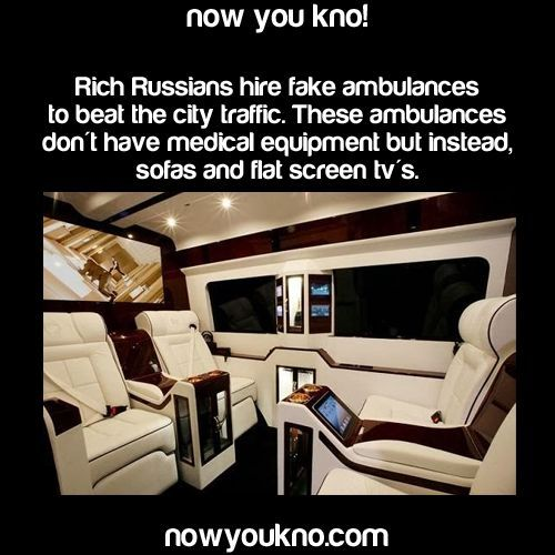 Image result for random facts that are funny