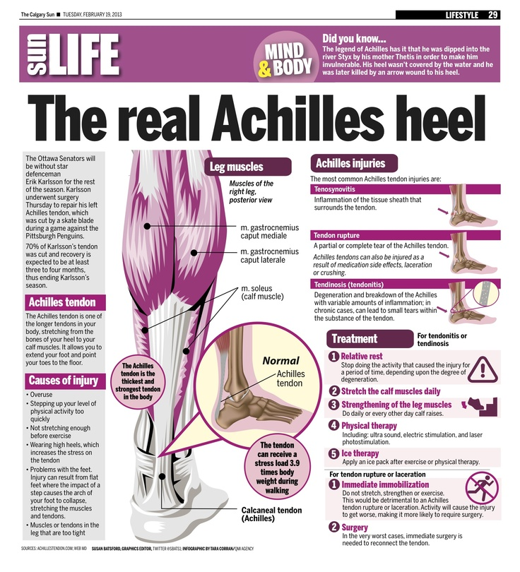 The Achilles tendon is one of the longer tendons in your body, stretching from the bones of your heel to your calf muscles. It allows you to extend your foot and point your toes to the floor.
