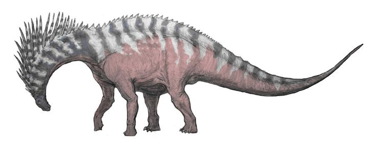 A male Amargasaurus, in full breeding rut, bows his head and rattles his spines to signal his willingness to mate.