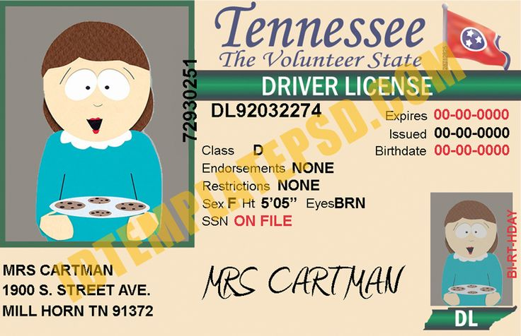 This is Tennessee (USA State) Drivers License PSD (Photoshop) Template. On this PSD Template you can put any Name, Address, License No. DOB etc and make your personalized Driver License.  You can also print this Tennessee (USA State) Drivers License from a professional plastic ID Card Printer and use as per your requirement.