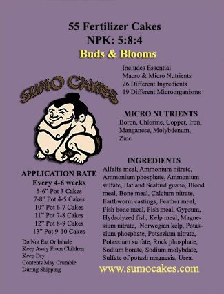 Sumo Cakes: Buds & Blooms, is not just any bonsai fertilizer cake that contain just the normal NPK that every fertilizer does. In addition, these contain the 3 secondary and the 7+ micro nutrients that plants require to grow healthy and strong. Most noteworthy is that Sumo Cakes: Buds & Blooms include 19 microorganisms (including 14 mycorrhizea species) and over 70 natural vitamins and minerals.