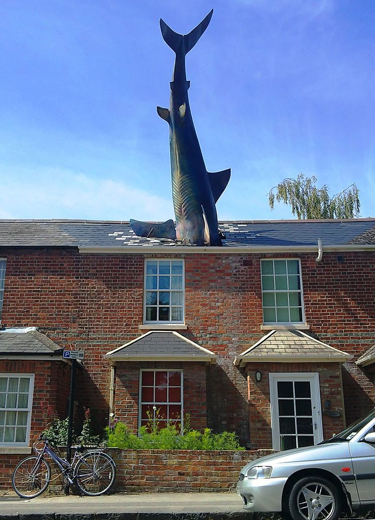 De Haai, Oxford, Engeland
