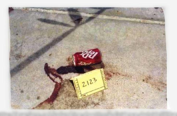 1000+ images about columbine on Pinterest   Teaching, Columbine high ...