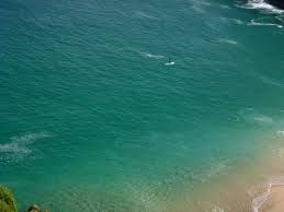 Image result for sup hire cornwall