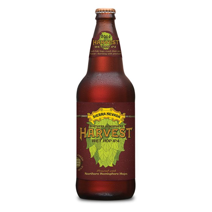 5 Fresh Hop Beers to Drink this Fall #FWx