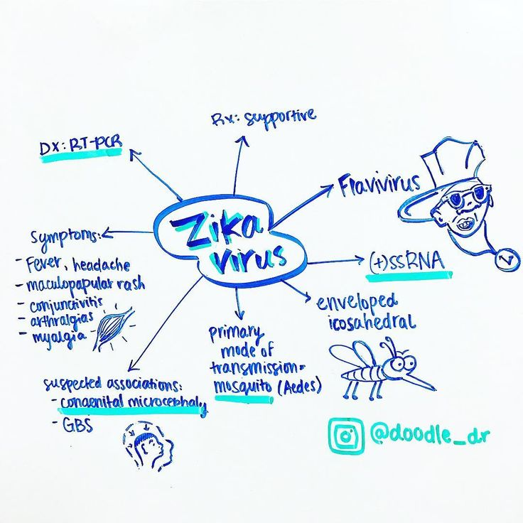 I don't know a whole lot about Zika virus tbh, but I found this info on baronerocks.com. Like he says, Zika virus is SEXY! Don't be surprised if it's on your boards 🙃 Side note: that's my attempt to draw Flavor Flav 😂 #zika #usmle #step1 #medschool #medstudent #study #flavorflav