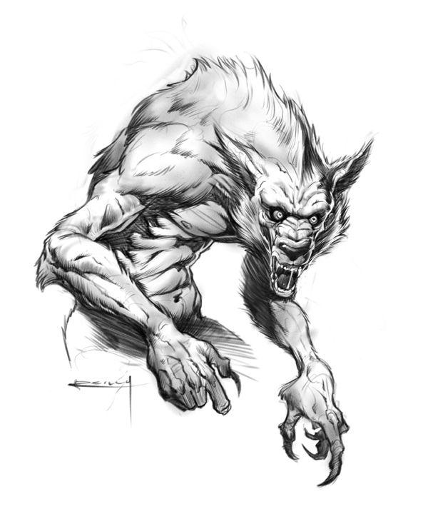 Resultado de imagem para drawing werewolf