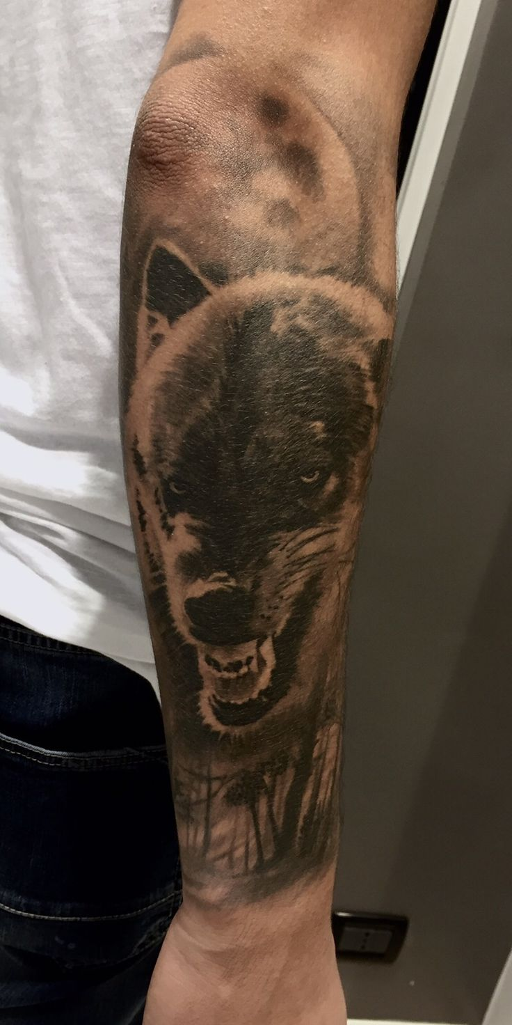 Realistic wolf Tattoo Black and gray Artist:Alessandro Joy Raggi