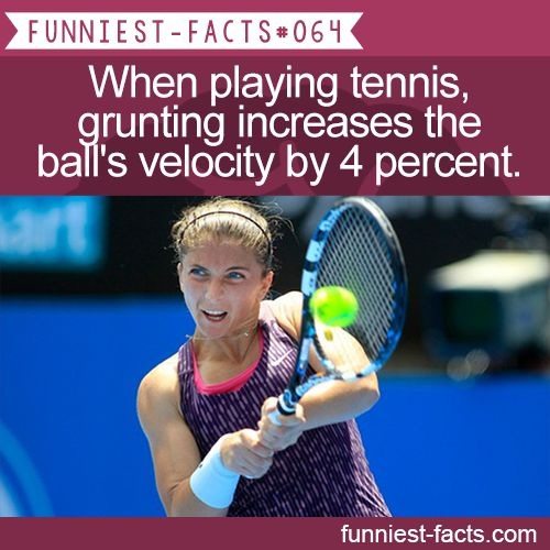 When playing tennis, grunting increases the ball's ...