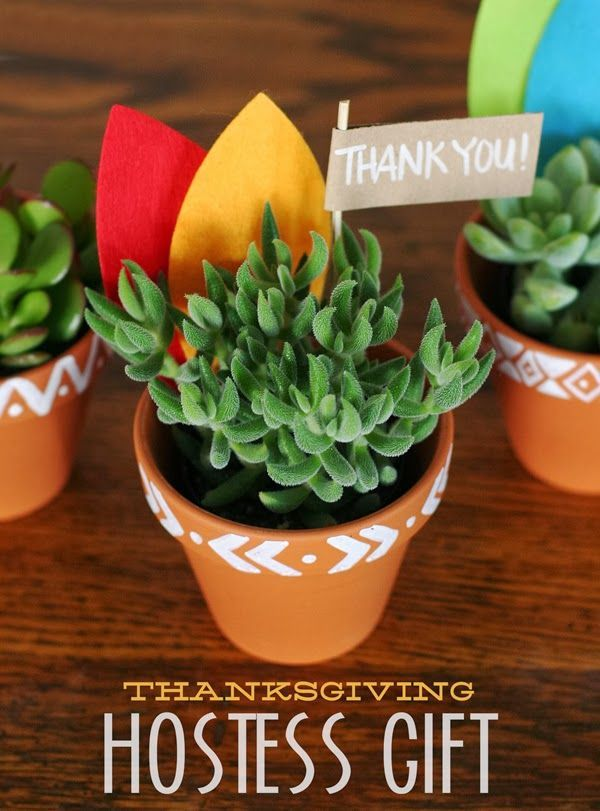 Thanksgiving hostess gift. Everyone loves a new succulent.