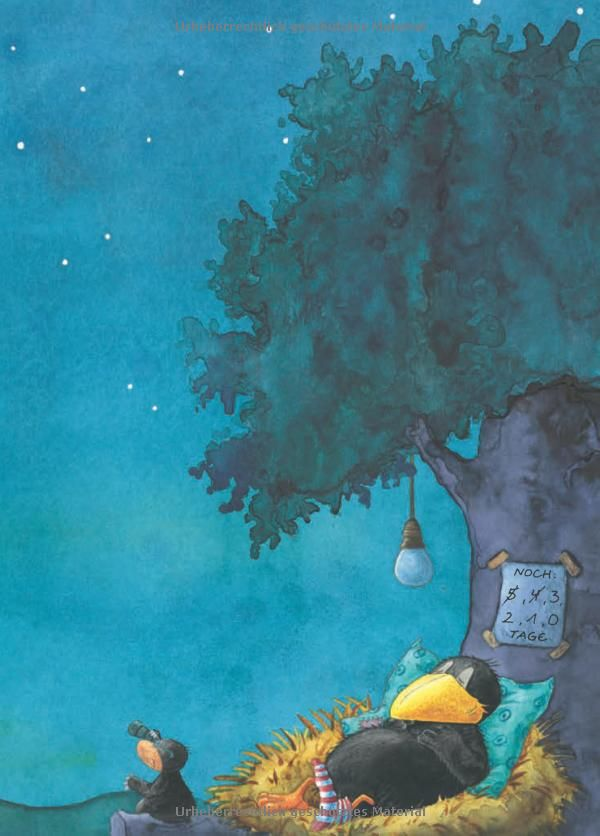 Alles erlaubt? oder Immer brav sein – das schafft keiner! Der kleine Rabe Socke, Band 23279: Amazon.de: Nele Moost, Annet Rudolph: Bücher