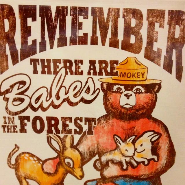 Smokey the bear!