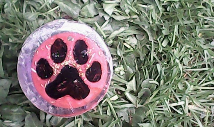 Orgonite Pet Health Pod Red