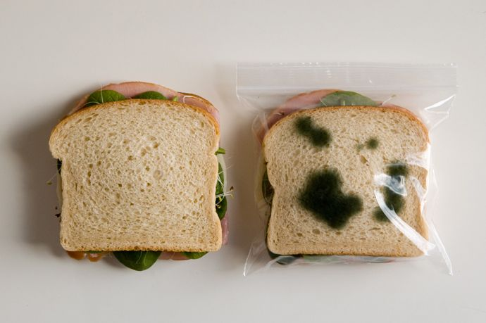 A Fun Way to Deter Petty Theft - Zipper bags with pre-printed mold...lololol: Antitheft Lunches, Lunches Bags, Funny, Lunch Bags, Sandwiches Bags, Great Ideas, Products, Zippers Bags, Anti Theft Lunches