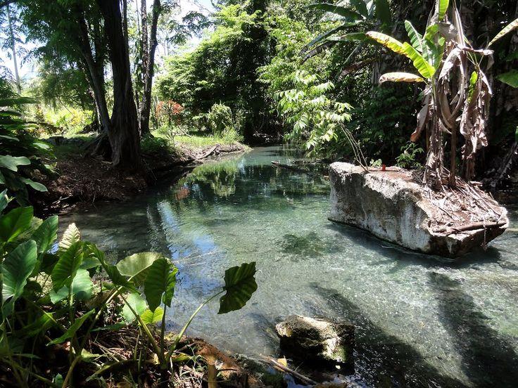 Balek Wildlife Sanctuary