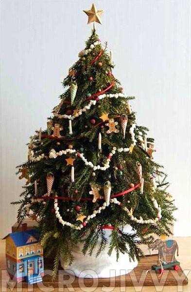 Top 25+ best Victorian christmas tree ideas on Pinterest ...
